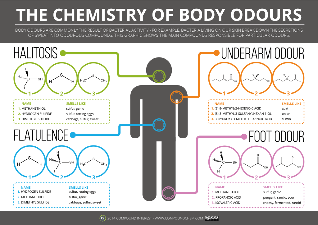 Chemistry-of-Body-Odors