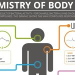 The Chemistry of Body Odors: Sweat, Flatulence, Smelly Feet
